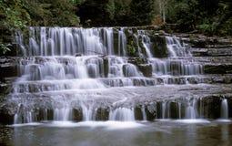 Liffey Falls Stock Photo