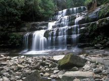 Liffey Falls Royalty Free Stock Images