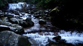 Liffey Falls in the Midlands Region, Tasmania. Beautiful Liffey Falls in the Midlands Region, Tasmania after heavy rain fall stock video footage
