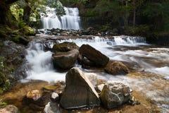 Liffey Falls Stock Image