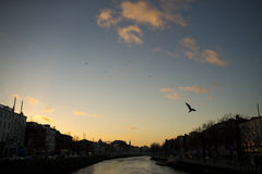 Liffey river flowing through Dublin Stock Photography
