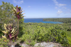 Lifou landscape Stock Photos