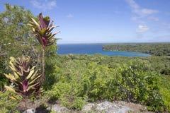 Lifou landscape Stock Photos