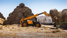 Lift tractor machinery working on farm lifting straw bales Stock Photos
