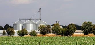 Lift voor korrelopslag Groen gebied v??r het panorama van dorp en het agro-industri?le complex royalty-vrije stock foto's