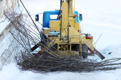 lift by which workers cut branches of trees lime  in the park in winter. Stock Photography
