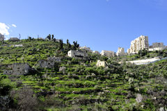 Lifta在耶路撒冷附近的村庄废墟 免版税图库摄影