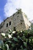 Lifta村庄老废墟  库存照片