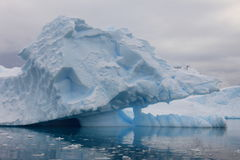 Lifted Iceberg in Antarctica Stock Photos