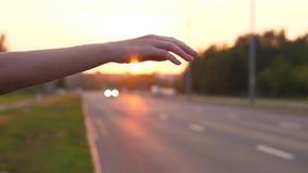 Liftende Jonge Vrouwenhand stock videobeelden
