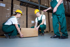 Lifting the box. Two young workers lifting heavy box in warehouse Stock Photography
