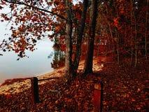 Lifting fog on the lakeside stock photography