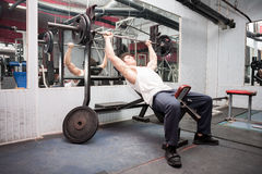 Lifting heavy weights in the gym. Muscular guy exercising in the gym. Lifting heavy weights in the gym. Bodybuilder workout Royalty Free Stock Image