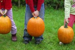 Lifting pumpkin. Children are lifting heavy pumpkins Stock Image