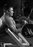 Lifting weights. Biceps exercise scott bench curl Royalty Free Stock Photos