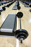 Lifting weights and  steppers Royalty Free Stock Photo