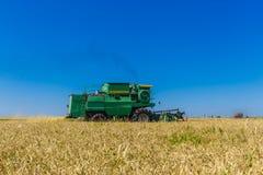 A liga da ceifeira trabalha no campo agrícola do trigo ou do centeio Foto de Stock Royalty Free