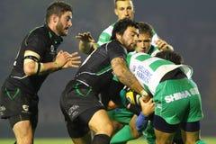 Liga do Celtic do rugby; Benetton contra Connacht imagem de stock royalty free