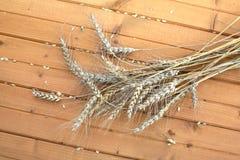 Liga giratória agrícola da ceifeira da grão em um campo no dia de verão Fotografia de Stock Royalty Free