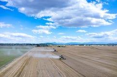 Liga que trabalha no campo de trigo Fotografia de Stock