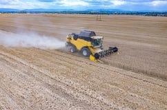 Liga que trabalha no campo de trigo Imagem de Stock