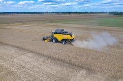 Liga que trabalha no campo de trigo Foto de Stock Royalty Free