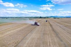Liga que trabalha no campo de trigo Imagem de Stock Royalty Free
