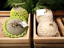 Ligamaza y melones japoneses foto de archivo libre de regalías