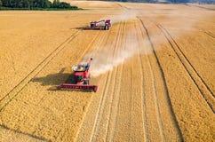 Ligas e tratores que trabalham no campo de trigo Imagem de Stock