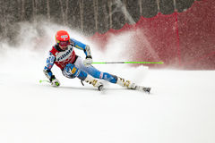 Ligety Ted Royalty Free Stock Photos