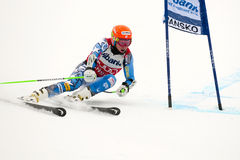 Ligety Ted Stock Photography