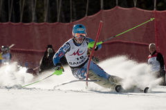 Ligety Ted Royalty Free Stock Image