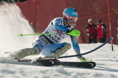 Ligety Ted fotos de stock