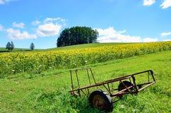 Liggande av Biei, Hokkaido. royaltyfria bilder