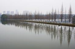 Liggande av den kinesiska parken Royaltyfri Bild