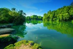 Liggande av floden Arkivfoto