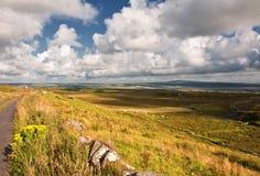 Liggande av lantliga ireland, västkusten ireland Royaltyfria Foton