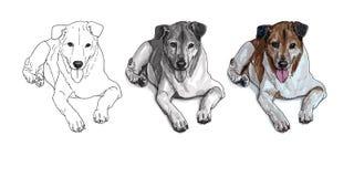 Liggande brun hund vektor illustrationer