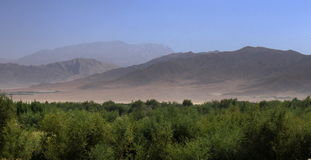 liggande för afghan ii Arkivbild