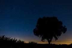 Liggande för Starry natt Fotografering för Bildbyråer