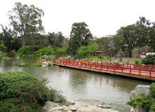 Liggande i en traditionell japanträdgård Arkivfoto