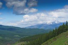 Liggande med berg Republik Altay Royaltyfri Fotografi