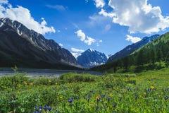 Liggande med berg Republik Altay Royaltyfria Foton