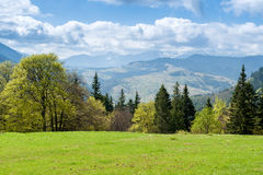 Liggande med berg Vår av Carpathians Arkivbild