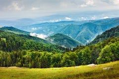 Liggande med Parang berg i Rumänien fotografering för bildbyråer
