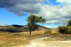 liggande montana Arkivfoton