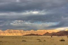 liggande namibia Arkivfoto