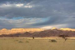liggande namibia Arkivbild