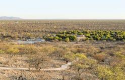 liggande namibia Royaltyfri Bild