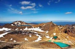 liggande nya vulkaniska zealand royaltyfria bilder